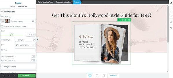 Como Criar Uma Landing Page no WordPress - joaobotas (3)