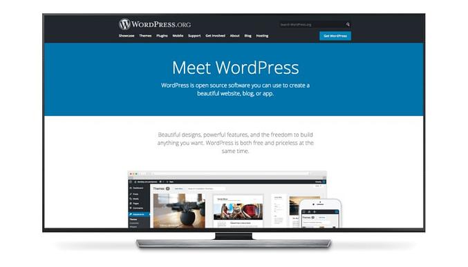wordpress para programa afiliados amazon . joaobotas.pt